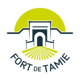 LogoMiseEnFormeSite-fort-de-tamie